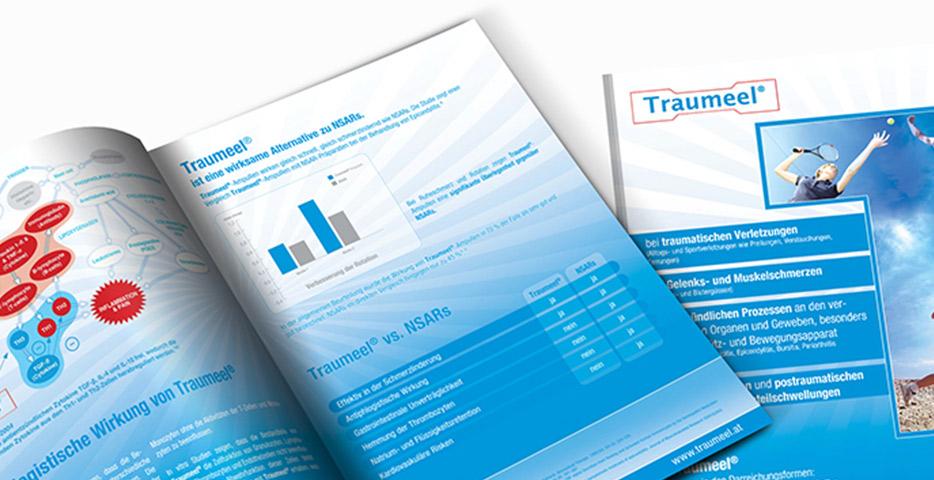 Referenzen Werbeagentur hanner inc. Grafik und Design Traumeel ®