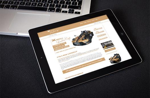 WordPress Websites Werbeagentur Linz hannerinc Ladiescup